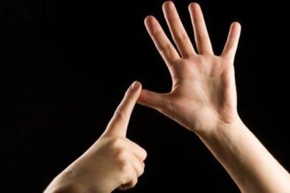 tercüme ve işaret dili